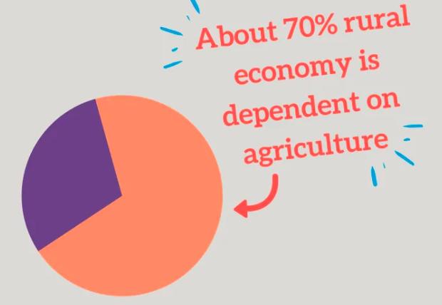 农村品牌如何运营?如何制定农村品牌战略? 默认分类 第4张