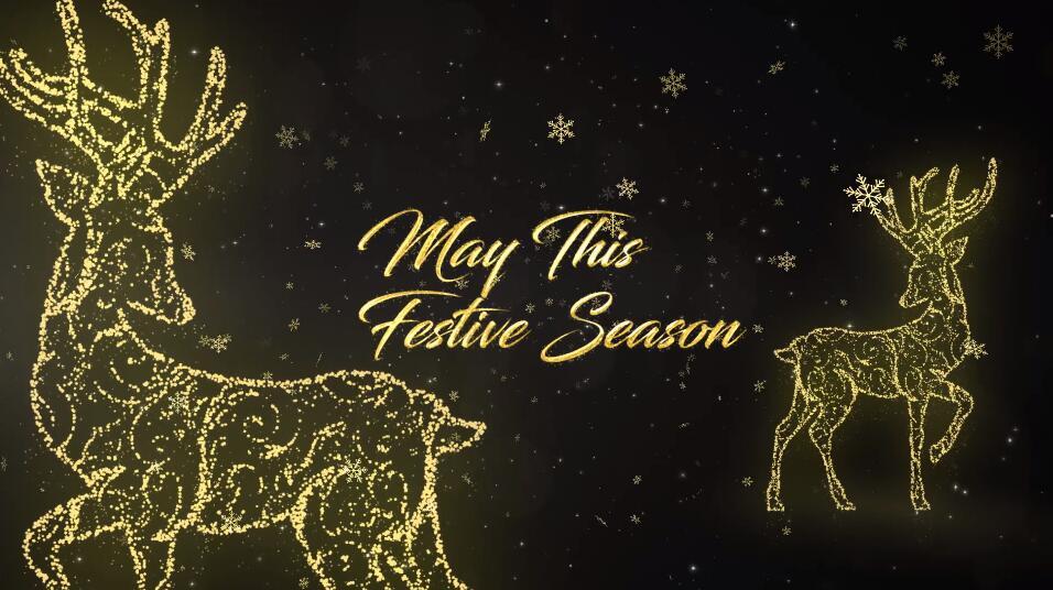 Premiere圣诞节日活动视频模板 光线穿梭金色雪花粒子效果PR标题文字模板插图